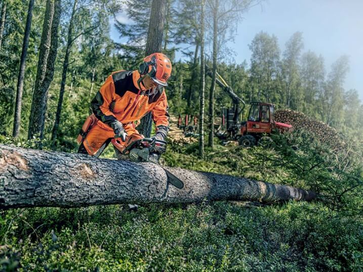 History of the Chainsaw – Celebrating 60 Years